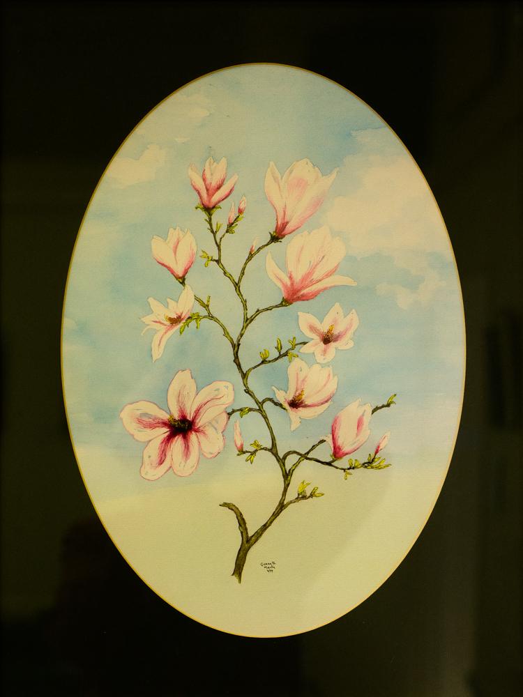Magnolia – Gwyneth Martin – WC