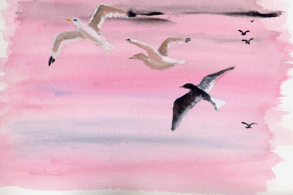 Flying into the sun (gulls) – Gouache