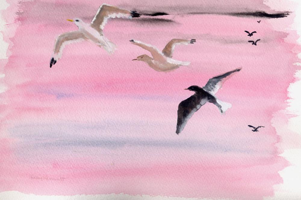 Flying into the sun (gulls) – Gouache
